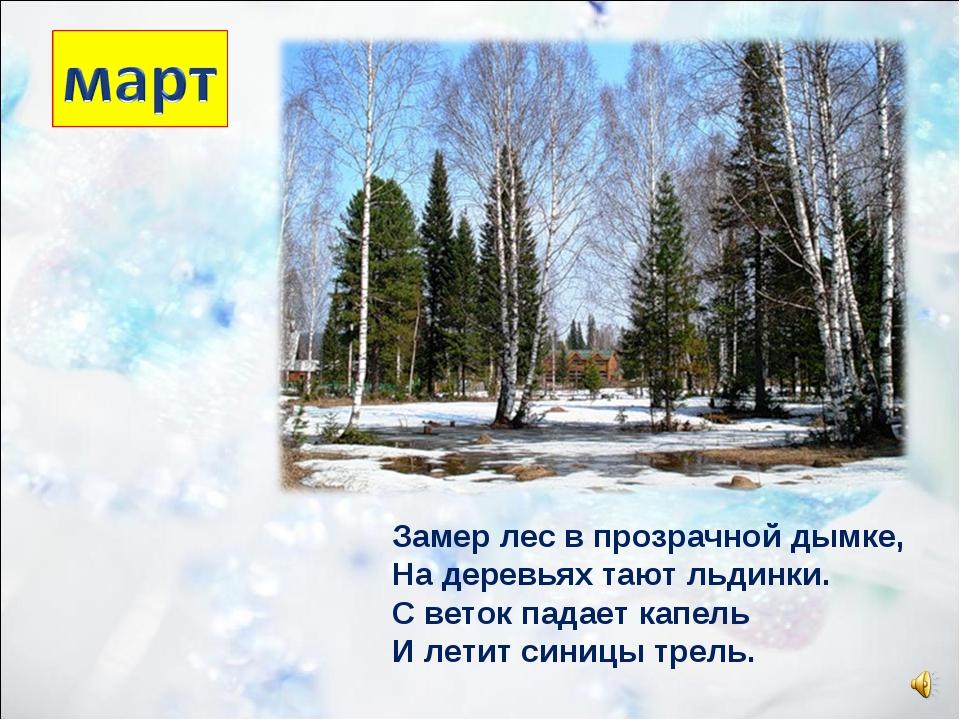 Замер лес в прозрачной дымке, На деревьях тают льдинки. С веток падает капель...