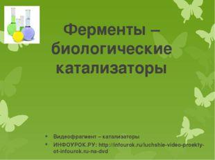 Ферменты – биологические катализаторы Видеофрагмент – катализаторы ИНФОУРОК.Р