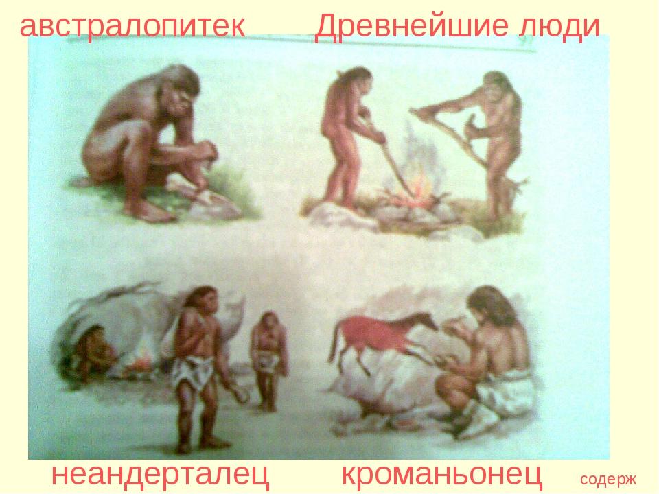 австралопитек Древнейшие люди неандерталец кроманьонец содерж