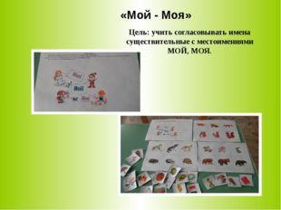 «Мой - Моя» Цель: учить согласовывать имена существительные с местоимениями М