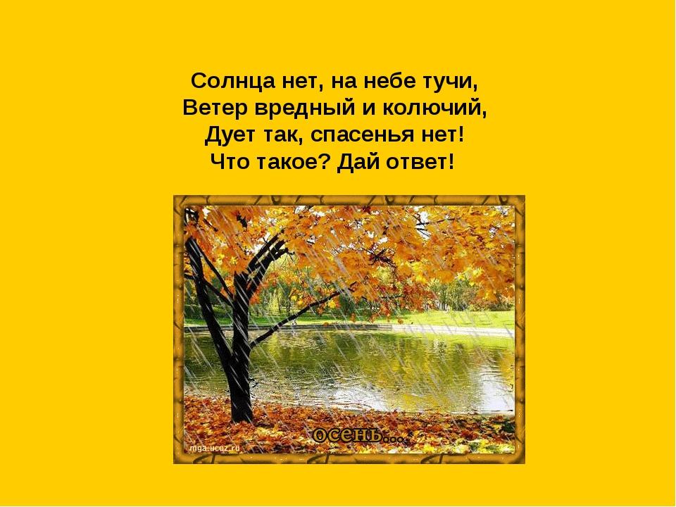 Солнца нет, на небе тучи, Ветер вредный и колючий, Дует так, спасенья нет! Чт...
