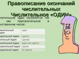 Правописание окончаний числительных Числительное «ОДИН» Числительное один скл