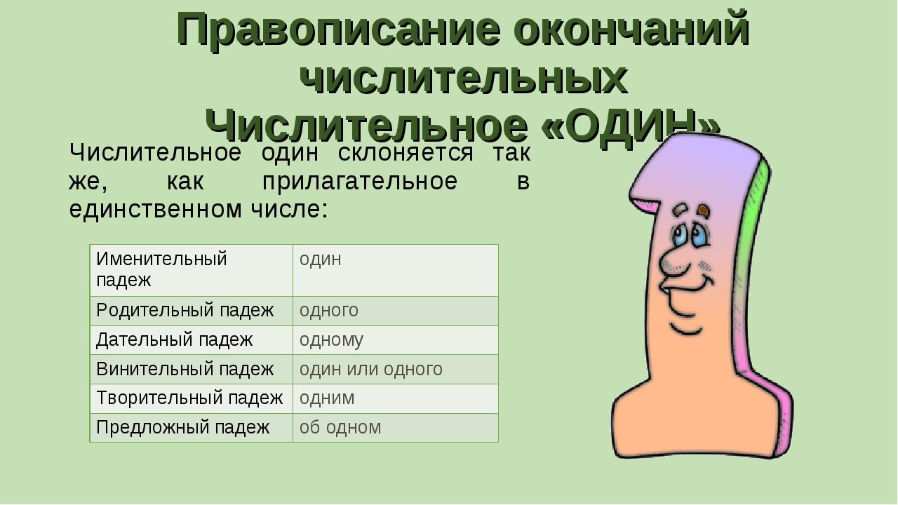Правописание окончаний числительных Числительное «ОДИН» Числительное один скл...