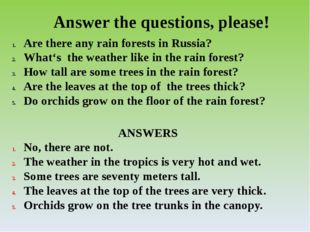 Answer the questions, please! Are there any rain forests in Russia? What's th