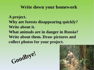 Write down your homework A project. Why are forests disappearing quickly? Wri