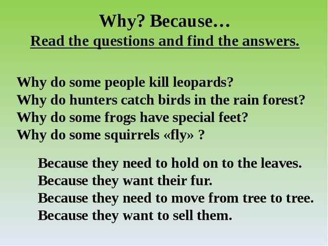 Why? Because… Read the questions and find the answers. Why do some people kil...