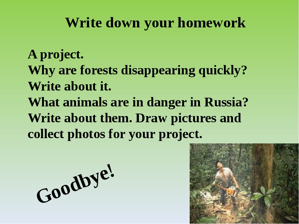 Write down your homework A project. Why are forests disappearing quickly? Wri...