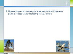 Презентация выполнена учителем школы №323 Невского района города Санкт-Петерб