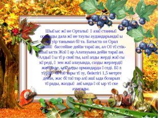 Шығыс және Орталық Қазақстанның орманды дала және таулы аудандарындағы едәуір