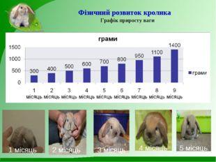 Фізичний розвиток кролика Графік приросту ваги 1 місяць 2 місяць 3 місяць 4 м
