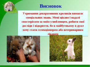 Висновок Утримання декоративних кроликів вимагає спеціальних знань. Мені цік