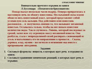 смысловое чтение Внимательно прочтите отрывок из книги Л.Буссенара «Похитител
