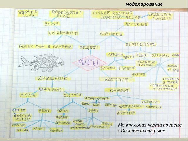 моделирование Ментальная карта по теме «Систематика рыб»