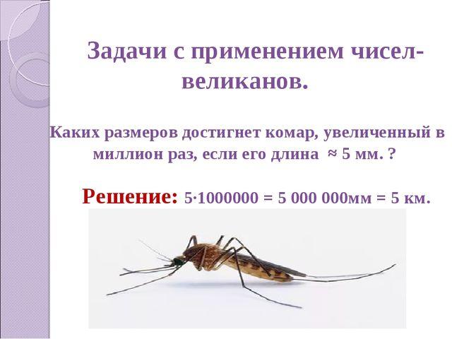 Задачи с применением чисел-великанов. Каких размеров достигнет комар, увеличе...