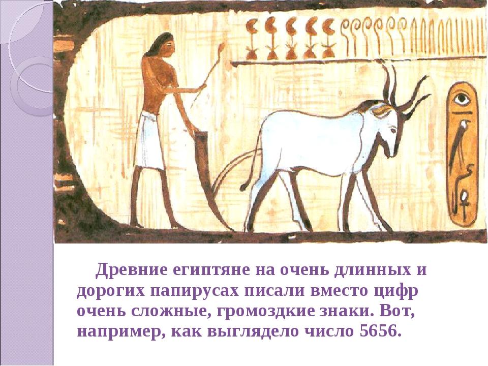 Древние египтяне на очень длинных и дорогих папирусах писали вместо цифр очен...