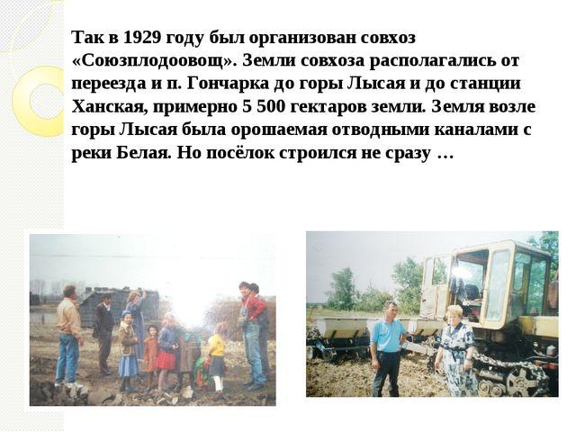 Так в 1929 году был организован совхоз «Союзплодоовощ». Земли совхоза распола...