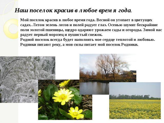 Мой поселок красив в любое время года. Весной он утопает в цветущих садах. Ле...