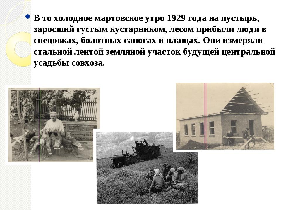 В то холодное мартовское утро 1929 года на пустырь, заросший густым кустарник...