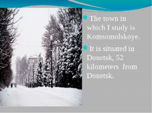 The town in which I study is Komsomolskoye. It is situated in Donetsk, 52 kil