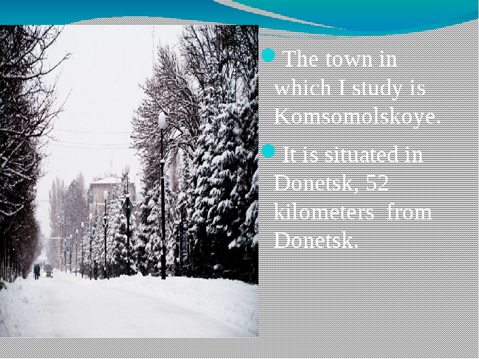 The town in which I study is Komsomolskoye. It is situated in Donetsk, 52 kil...