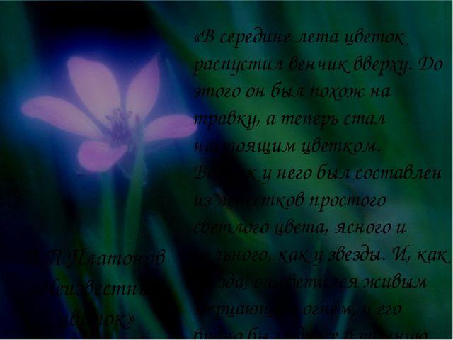 «В середине лета цветок распустил венчик вверху. До этого он был похож на тра...