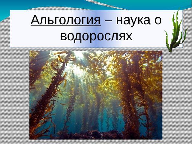 Альгология – наука о водорослях