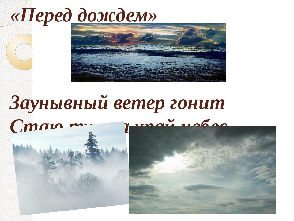 «Перед дождем» Заунывный ветер гонит Стаю туч на край небес,