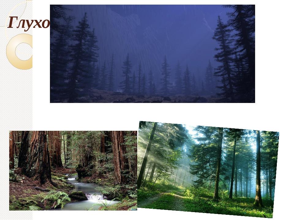 Глухо шепчет темный лес.