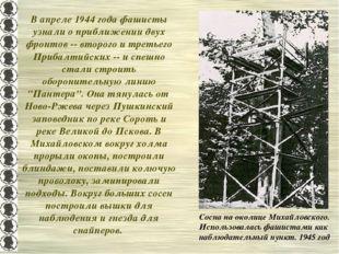 В апреле 1944 года фашисты узнали о приближении двух фронтов -- второго и тре