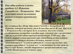 Его хозяином был Петр Абрамович Ганнибал, двоюродный дед Пушкина, который про