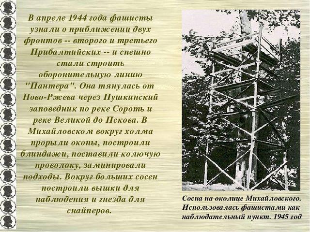 В апреле 1944 года фашисты узнали о приближении двух фронтов -- второго и тре...