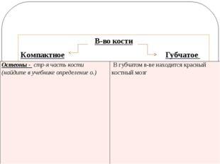 В-во кости Компактное Губчатое Остеоны -стр-ячасть кости (найдите в учебнике