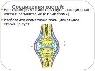 Соединения костей: На странице 79 найдите 3 группы соединения кости и запиши