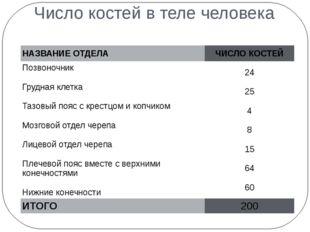 Число костей в теле человека НАЗВАНИЕ ОТДЕЛА ЧИСЛО КОСТЕЙ Позвоночник Грудная