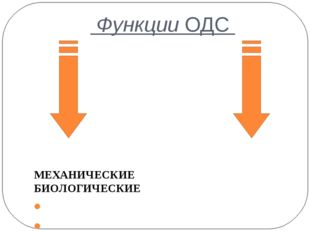 Функции ОДС МЕХАНИЧЕСКИЕ БИОЛОГИЧЕСКИЕ