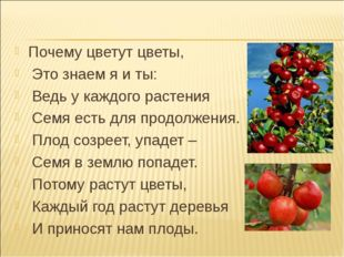 Почему цветут цветы, Это знаем я и ты: Ведь у каждого растения Семя есть для