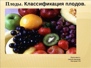 Плоды. Классификация плодов. Семена Околоплодник Подготовила : учитель биолог