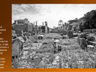 Территория Форума усеяна обломками античной архитектуры. Какие-то участки ого
