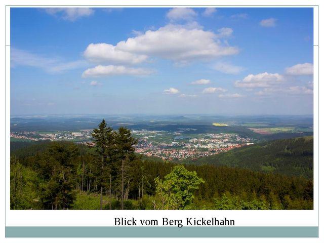 Blick vom Berg Kickelhahn