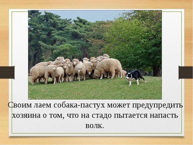 Информационные источники: http://www.metod-kopilka.ru http://festival.1septem...