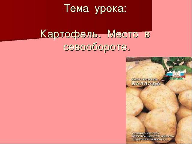 Тема урока: Картофель. Место в севообороте.