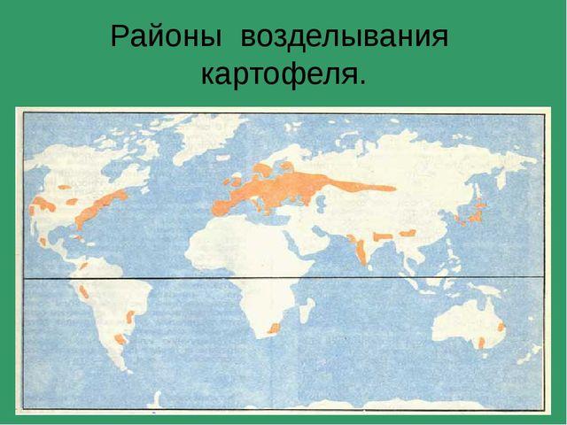 Районы возделывания картофеля.