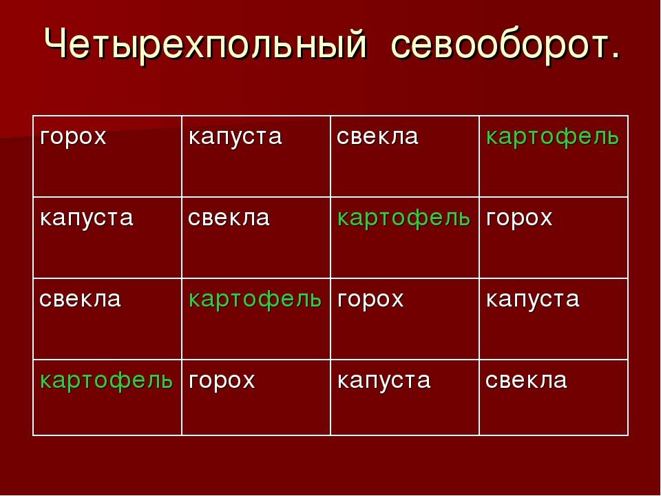 Четырехпольный севооборот. горохкапустасвеклакартофель капустасвеклакарт...