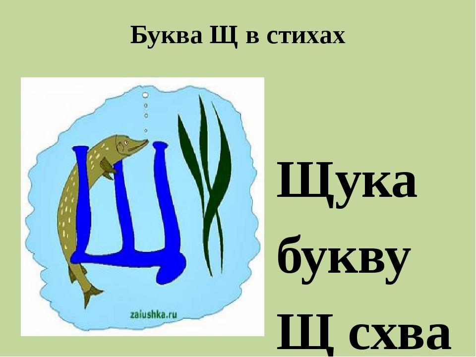 Буква Щ в стихах  Щука буквуЩсхватила И под воду утащила. Буква быть на д...