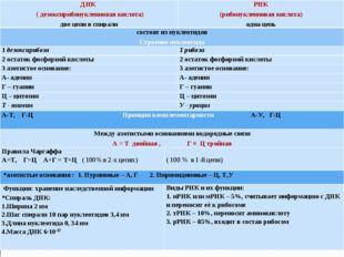ДНК ( дезоксирибонуклеиновая кислота) две цепи в спиралиРНК (рибонуклеиновая