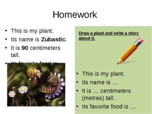 Homework This is my plant. Its name is Zubastic. It is 90 centimeters tall. I