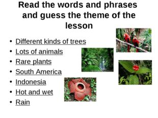 Read the words and phrases and guess the theme of the lesson Different kinds