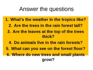 Answer the questions What's the weather in the tropics like? Are the trees in