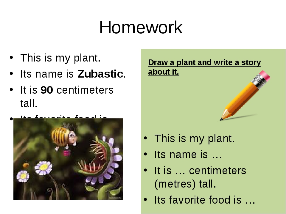Homework This is my plant. Its name is Zubastic. It is 90 centimeters tall. I...