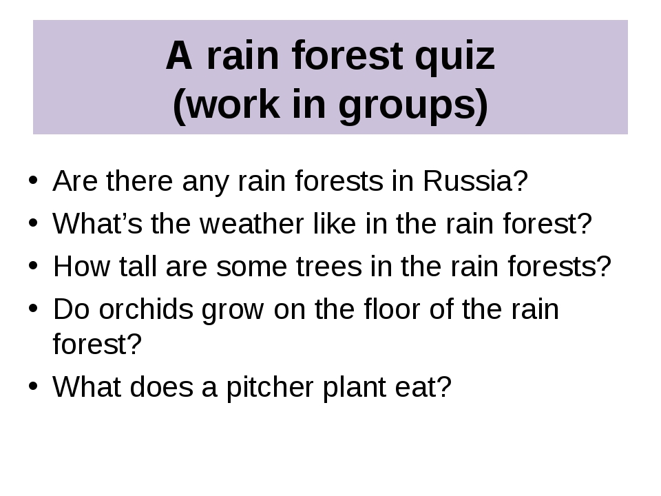 A rain forest quiz (work in groups) Are there any rain forests in Russia? Wha...